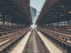 15 Usaha Peternakan SUKSES yang Banyak Pembelinya